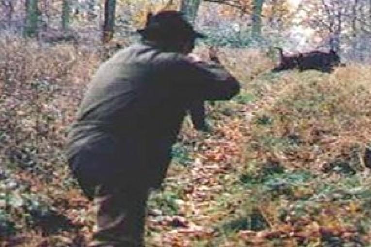 caccia cinghiale-testata