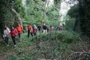 I volontari del Cai puliscono e piantano nuovi alberi