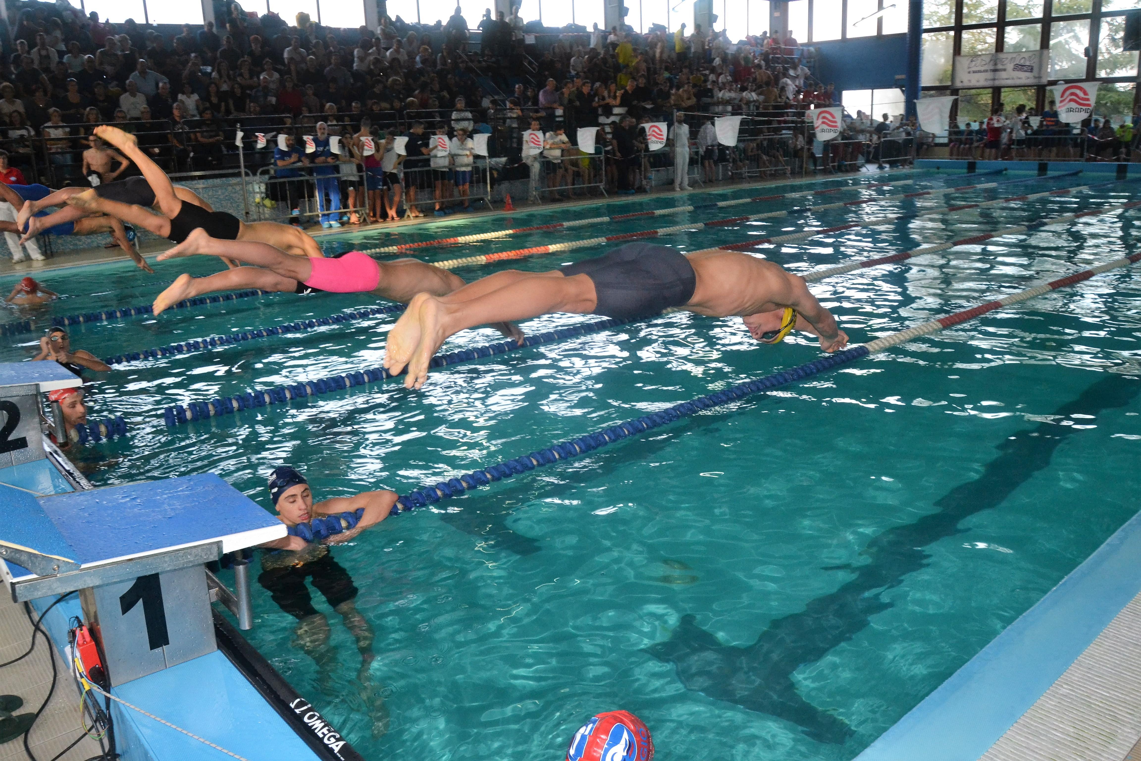 Alla piscina comunale di san salvo la coppa olimpica il - Piscina comunale san salvo ...
