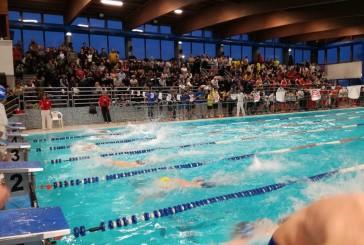 Successo e grandi numeri per il XIII Trofeo di nuoto Tano Croce