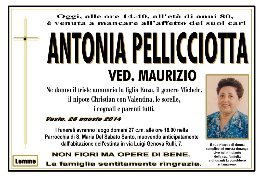 ANTONIA PELLICCIOTTA