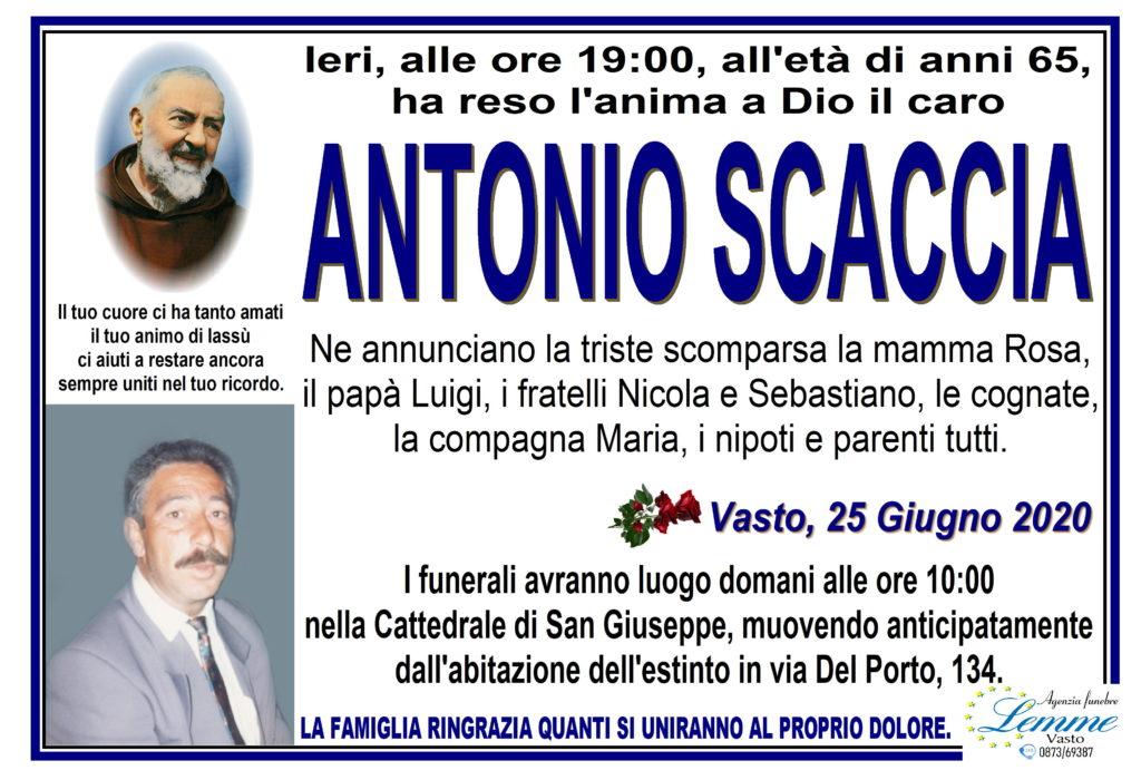 ANTONIO SCACCIA