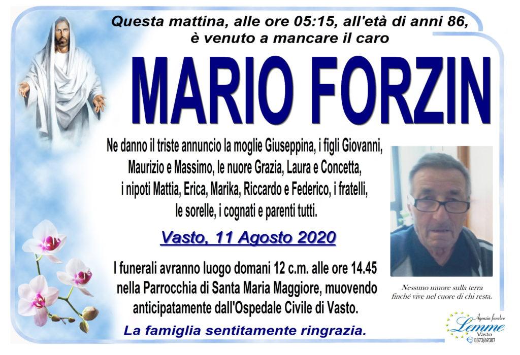 MARIO FORZIN